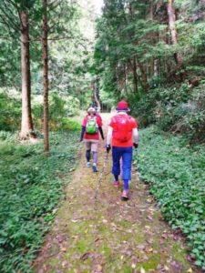 奥山自然遊歩道1