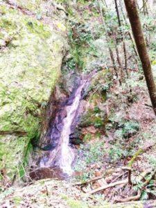 奥山自然遊歩道6