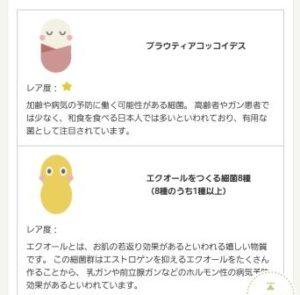 腸内環境4